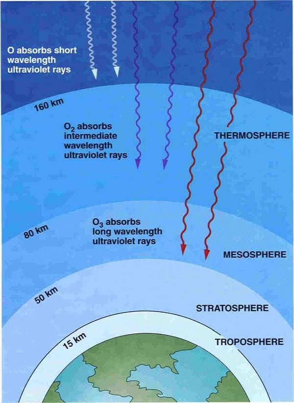 a study on the ozone layer The global market for rocket launches may require more stringent regulation in order to prevent significant damage to earth's stratospheric ozone layer in the decades to come, according to a new.