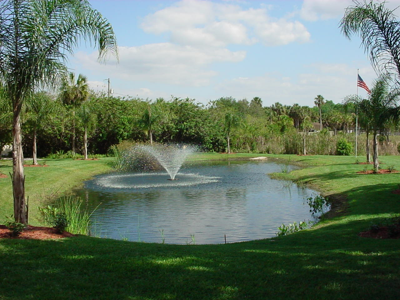 Sunllakeartificial for Artificial pond water