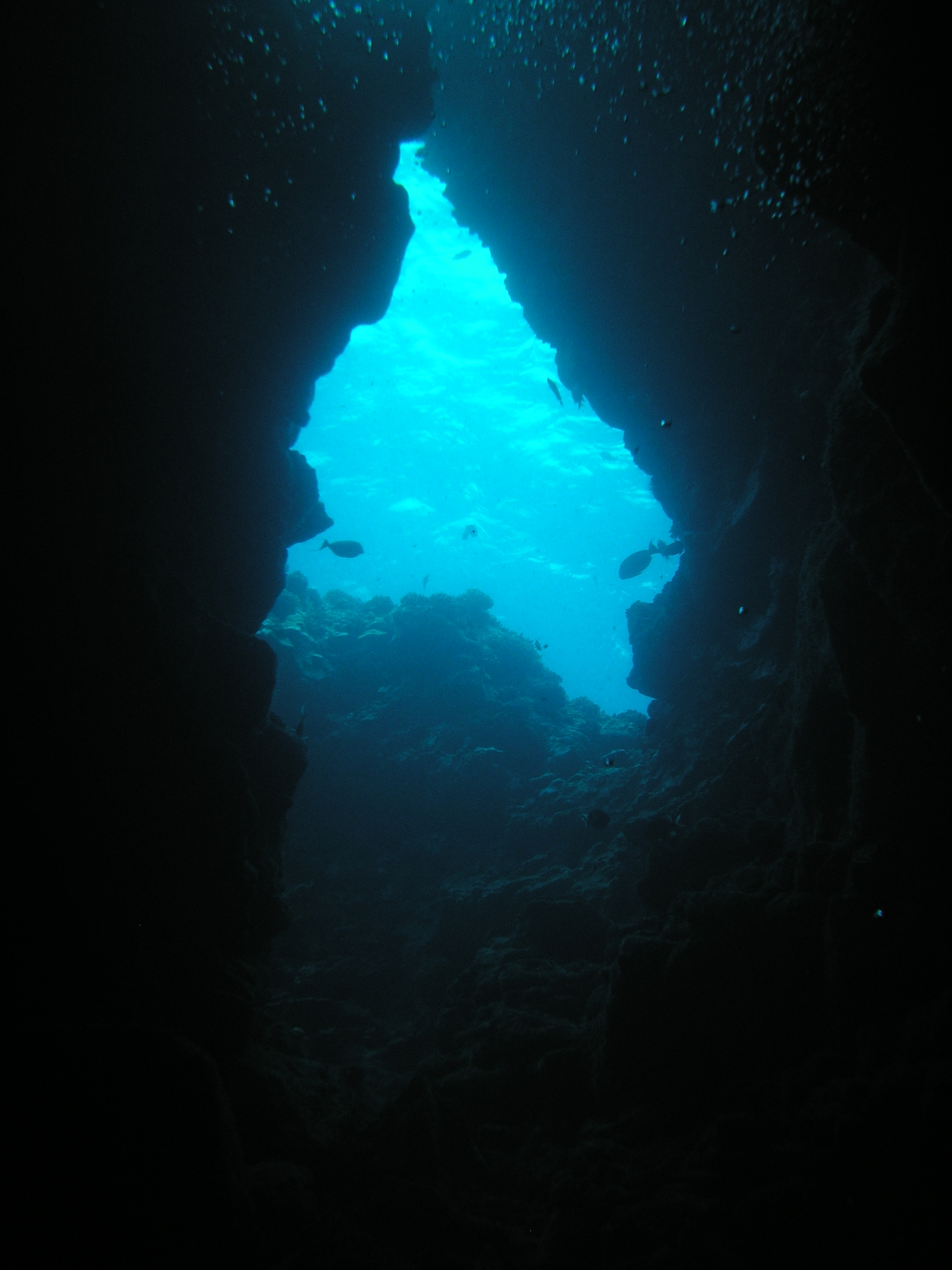 SUN\u\underw... Underwater Ocean Images